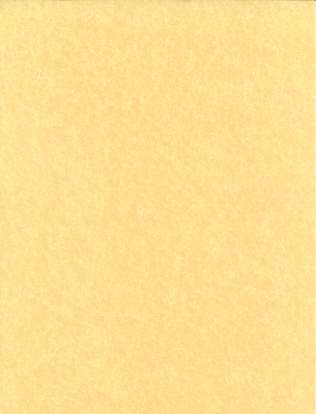 "5 Pack 8 1/2""x11"" light parchment"